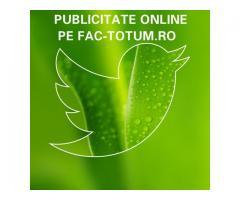 Publicitate pe fac-totum.ro