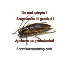 Dezinsectie=Deratizare non stop