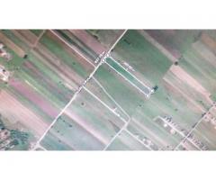 TEREN Parcelabil in BERCENI - ILFOV , 9901 mp